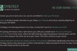 Prezentare Synergy-03