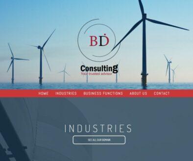 bdi-consulting